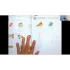สอนภาษาญี่ปุ่นออนไลน์ (ครูไบท์) ฮิระงะนะ คาบที่ 12 เรื่องจดจำคำศัพท์วรรค (Wa)และการใช้ (O)ตอนที่ 2/2