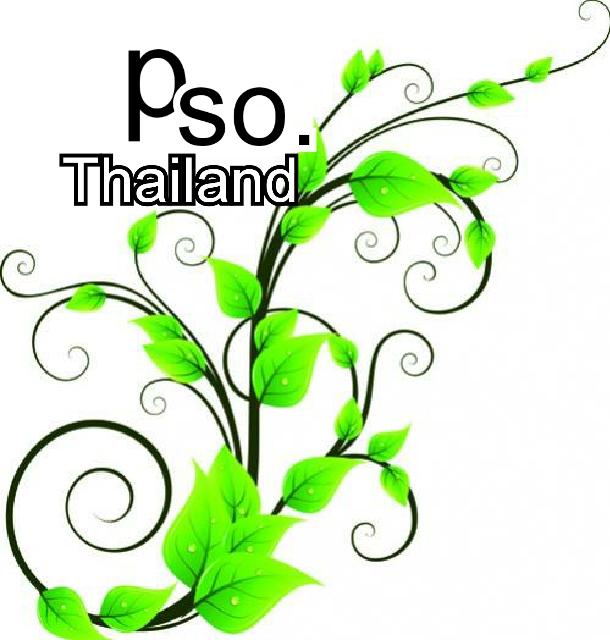 กระดาษย่น กระดาษโปสเตอร์ อุปกรณ์ประดิษฐ์ดอกไม้ รามี่ กระดาษสา pso.thailand
