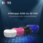 DS-1003