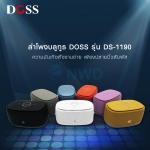 DS-1190