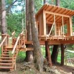 สิ่งควรรู้ก่อนสร้างบ้านต้นไม้