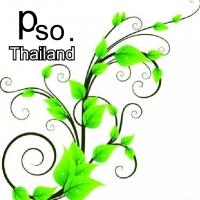 ร้านกระดาษย่น กระดาษโปสเตอร์ อุปกรณ์ประดิษฐ์ดอกไม้ รามี่ กระดาษสา pso.thailand