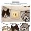 พร้อมส่ง กระเป๋าสะพายข้าง แบรนด์Beibaobao รุ่น B01445 (สีดำ สีครีม สีชมพู) thumbnail 4