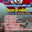 แนวข้อสอบ เจ้าหน้าที่บริหารงานทั่วไป 3-5 สภากาชาดไทย NEW thumbnail 1