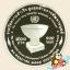 เหรียญ 900 บาท สหประชาชาติทูลเกล้าฯ ถวายรางวัลความสำเร็จสูงสุด (UNDP) (ขัดเงา) thumbnail 1